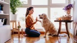 Avoir un chien pour sa santé