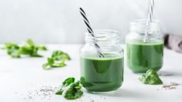 Smoothies verts detox : les meilleures recettes pour purifier votre corps