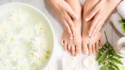 Remèdes pour éliminer l'acide urique (la goutte)